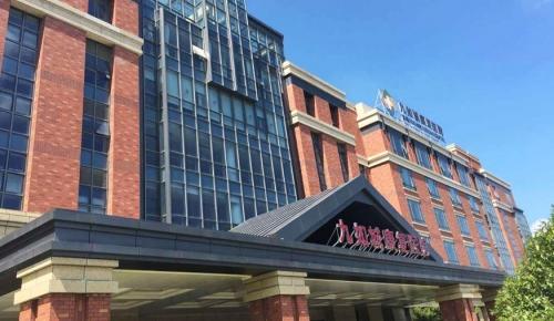 九如城康复医院